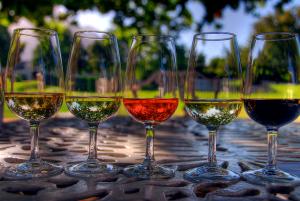 Wine tasting tours Hungary